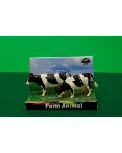 Cows black & white standing 2x