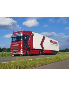 "Scania NG S HL ""Fellinger"""