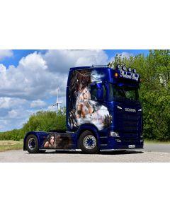 """Scania S HL CS20H """"Roland Graf"""""""